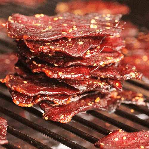 jerky for camping