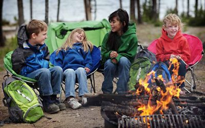 What is the Best Firewood When Camping?