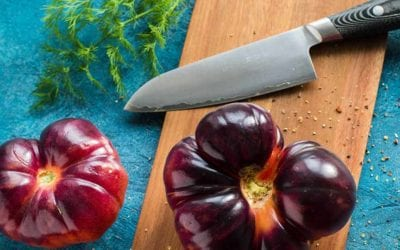 Knife Facts: Is s110v better than s30v?